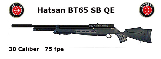 Hatsan BT65 Quiet Energy .30 Caliber