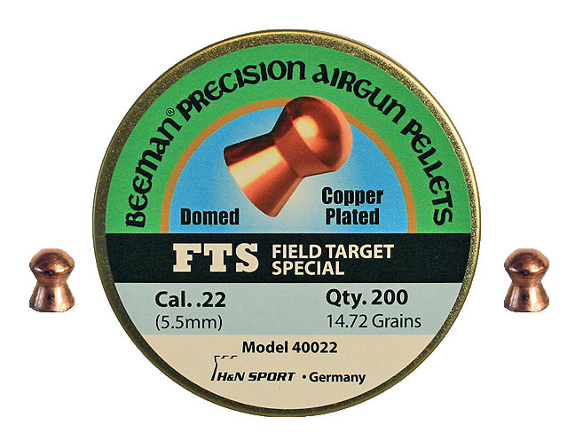 Beeman FTS .22 Copper Coated