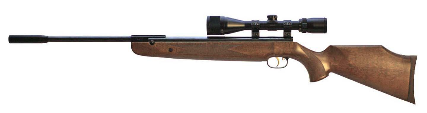 Beeman R9 Elite .22 Beech w/scope