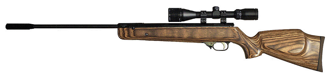 Beeman RX2 Elite .20 Laminate w/scope